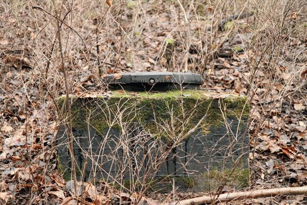 Brunnenschacht