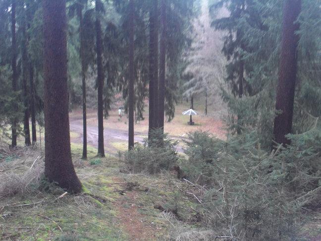 kurz vor der Schutzhütte Felsenhäuschen