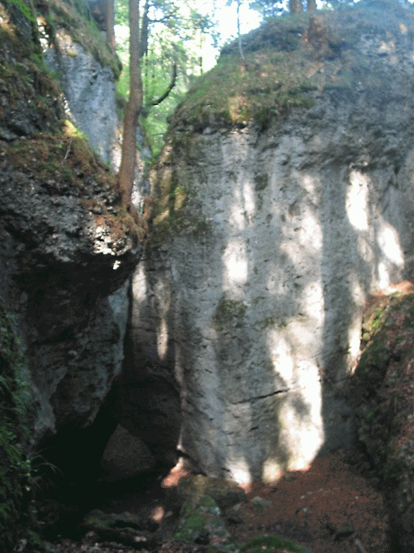 Der Alvier hat eine tiefe Klamm in den Fels geschnitten