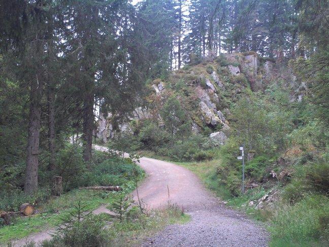 Felsen im Naturschutzgebiet