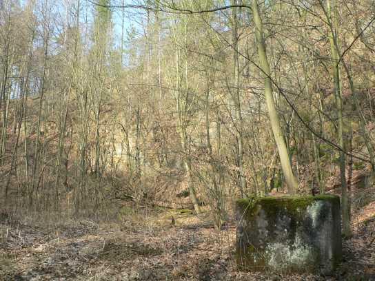 Steinbruch am Wettinplatz
