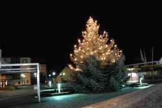 Weihnachtsbaum Herbrechtingen