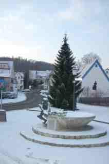 Weihnachtsbaum Mergelstetten