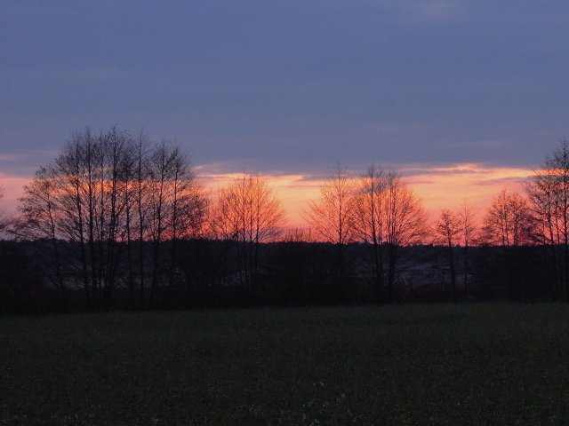 Busendorf