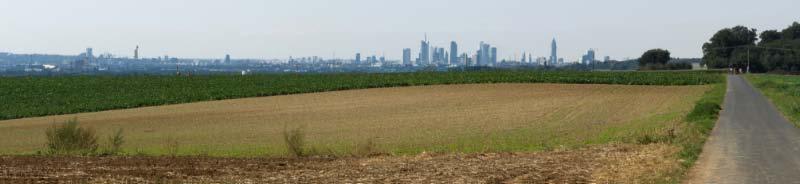 Frankfurt-Blick