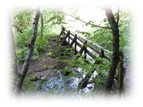 Die Brücke vor der Mündung