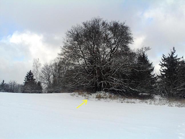der OC10450 im Winter