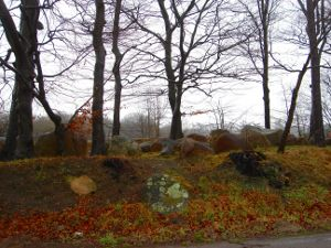 Blick vom Parkplatz auf die Hünengräber