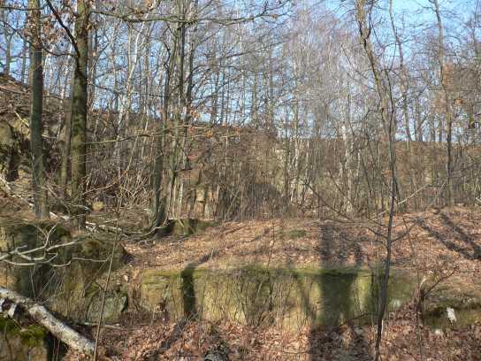 Steinbruch am Auenbach - Ost
