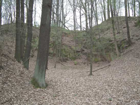 Steinbruch an der Hasenberger Höhe