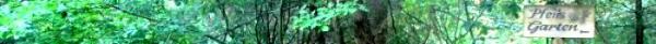 ADD71E40-3D3E-11E5-A8C9-525400E33611.jpg
