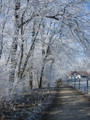 Winterliche Einkehr