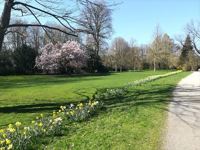 Spring at Hangeweiher