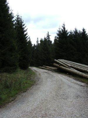 Weg zum Eipenketal