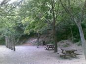 03 - Pic-nic area